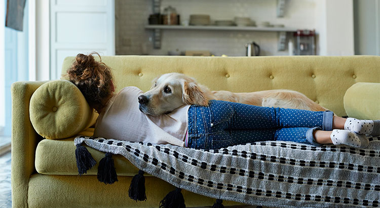 Why Pet-Friendly Homes Are in High Demand | MyKCM