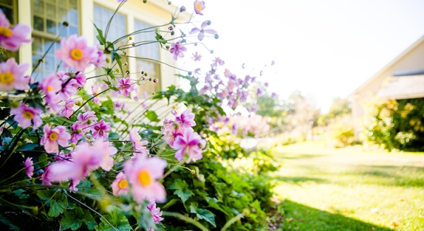 Will the Housing Market Bloom This Spring?   MyKCM